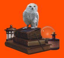 Harry Potter - Hogwarts Kit v1.0 Kids Tee