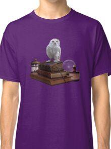 Harry Potter - Hogwarts Kit v1.0 Classic T-Shirt