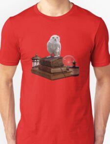 Harry Potter - Hogwarts Kit v1.0 Unisex T-Shirt