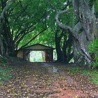 entry to rememberance by sharpbokeh