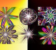 FSK Flower Flame Variations Montage by barrowda