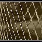Fenced In by aruni