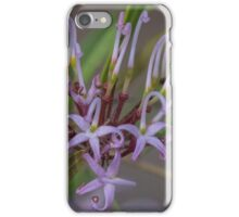 Pale purple Grevillea Leith Park Australia 20150904 0264 iPhone Case/Skin