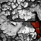 slow decay by shutterbug261