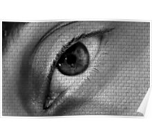 The Look @ Brick Wall Poster