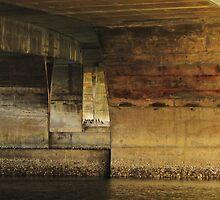 Cormortants Under The Waldport Ore. Bridge by trueblvr