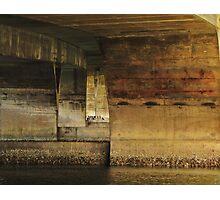 Cormortants Under The Waldport Ore. Bridge Photographic Print