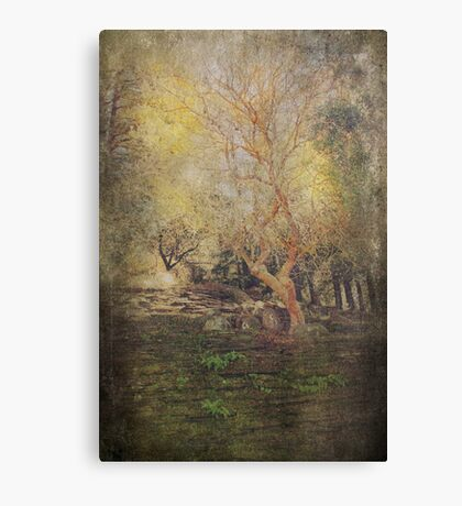 I Really Didn't Mean To Canvas Print