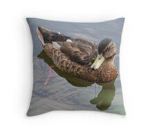 Female Mallard in refelction Throw Pillow