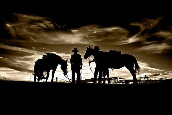 Drovers at Sunset by Carmel Williams