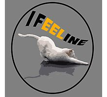 I Feel Fine (Feline) Photographic Print