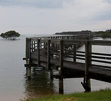 Urunga Boardwalk by myraj