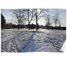 Snow & Trees Poster