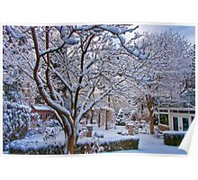 Winter Dawn Garden Poster