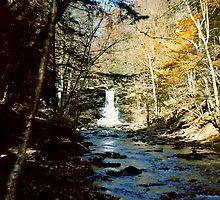Sheldon Reynolds Falls In Ricketts Glen circa 1979 by Paul Gitto