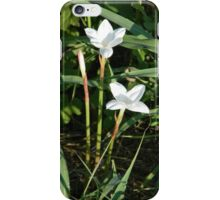 Rain Lily Morning, the Third Day - View Larger iPhone Case/Skin