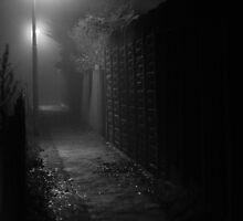 Fog alley by Niall Allen