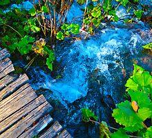Water under the bridge by bwatt