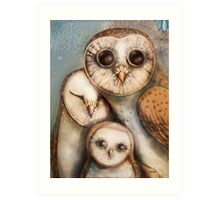 three wise owls Art Print