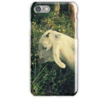 Little white goat iPhone Case/Skin