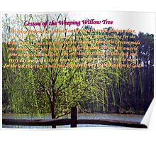 Lesson From the Weeping Willow Poster