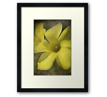 The Sunshine of My Life Framed Print