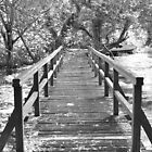 Bridge (B&W) - Krka National Park, Croatia by bwatt