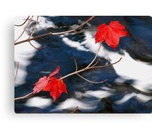 Maple Goodies Canvas Print