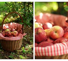 An Apple Affair by Hirondelles