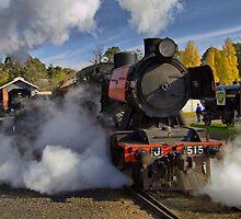 Maldon Steamer by Di Jenkins