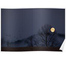Full Moon Migration Poster
