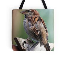 Little Brown Sparrow Tote Bag