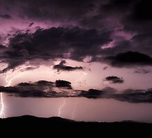 Purple Lightning-Kolodong NSW by Rodney Trenchard