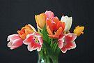 Tulip Bouquet by RebeccaBlackman