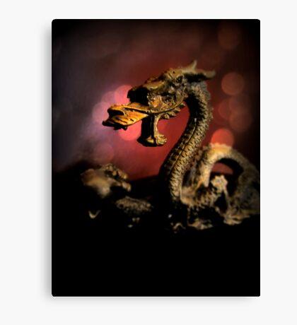 Dragon Dream Canvas Print
