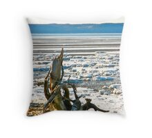 Belliveau Cove in Winter Throw Pillow