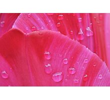 Graffiti after the rain - card Photographic Print