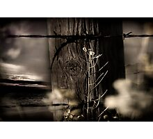 Through The Fence Line Photographic Print