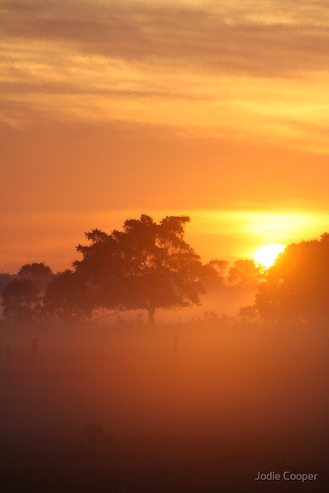 Sunrise of Oxley #4 by Jodie Cooper