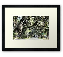 Floral City, Florida ~ View 2 Framed Print