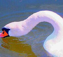 Head duck by ♥⊱ B. Randi Bailey