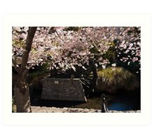 Blossom and Mill Wheel, Christchurch Art Print