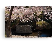 Blossom and Mill Wheel, Christchurch Canvas Print