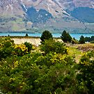 { new zealand mountains } by Brooke Reynolds