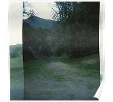 double exposed pathway. Poster