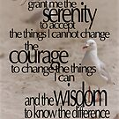 Serenity Prayer 01 © Vicki Ferrari Photography by Vicki Ferrari