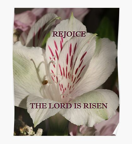 The Lord is Risen prints/cases/gifts/apparel Poster