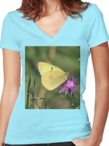 Beautiful Clouded Yellow Butterfly Women's Fitted V-Neck T-Shirt