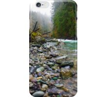 River Rock iPhone Case/Skin