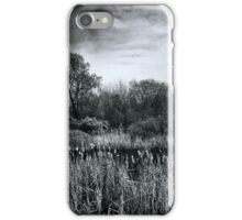 The Marsh triptych iPhone Case/Skin
